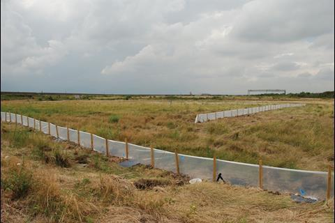This former oil refinery is home to protected species including great crested newts, which have to be moved before work starts. The newts are captured by erecting temporary fences (pictured); the animals run along these and fall into sunken buckets